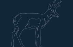 pronghorn Free Dxf File for CNC