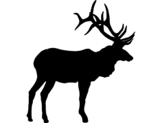 large bull elk olen Free Dxf File for CNC