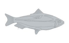 fishs Free Dxf File for CNC