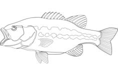 largemouth bass fish Free Dxf File for CNC