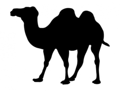 wielblad (camel silhouette) Free Dxf File for CNC