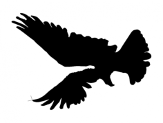 eagle 4 Free Dxf File for CNC