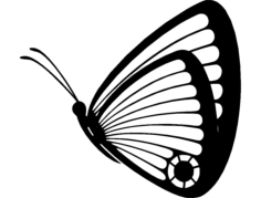 butterfly 05 Free Dxf File for CNC