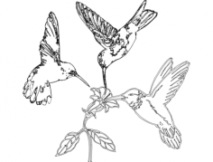 humming birds and flower Free Dxf File for CNC
