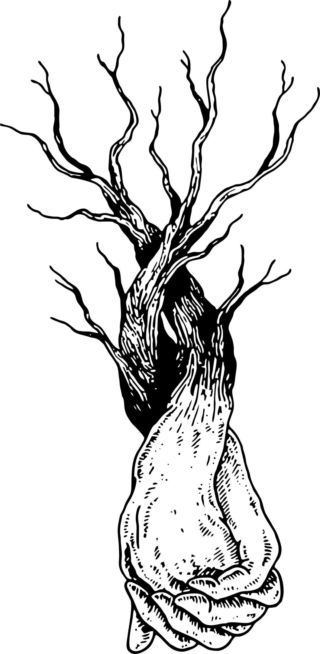 Hands Tree Vector Free Vector Cdr