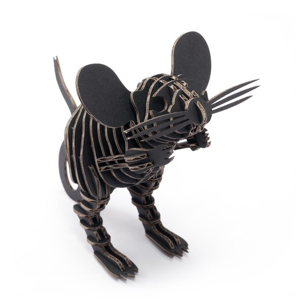 Mouse 3D Puzzle Free Vector Cdr